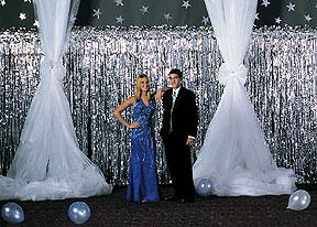 gossamer prom backdrop - Gossamer Fabric
